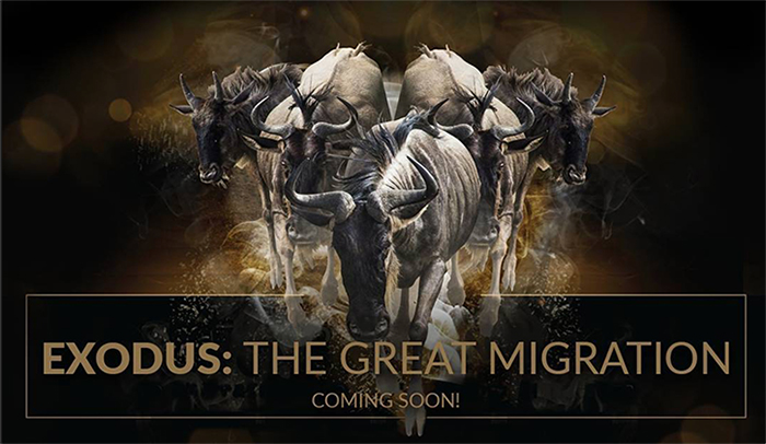 Exodus: The Great Migration in VR